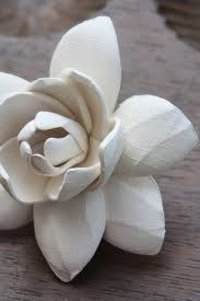 Ceramic Lotus Flower Gift