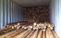 Bamboo Wood Poles