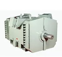 Ball Mill Duty Motor