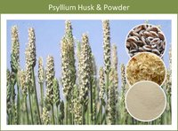 Weight Loss Psyllium Husk Powder