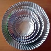 Silver Disposable Paper Plate