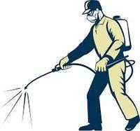 Pest Management Services