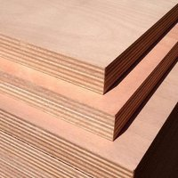 Greenply Plywood Board