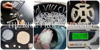 Rice Quality Inspection Services