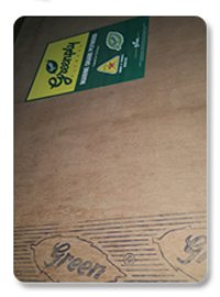 Plywood (Greenply)