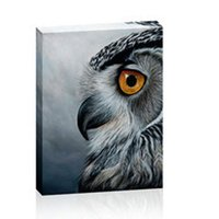 Eagle Wall Canvas Painting