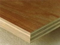 Strong Plywood for Doors