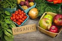 Organic Fresh Vegetables