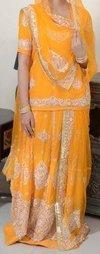 Ladies Rajasthani Rajpoti Dress