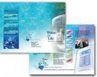Brochure Design Services Provider