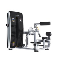 Abdominal And Back Extension Gym Machine