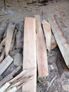 Low Price Timber Wood