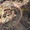Ferrous And Non-Ferrous Scrap Metal