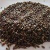 Superior Grade Flax Seeds