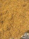 Pure Natural Satawer Roots