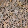 Mild Steel Scraps for Recycling