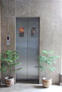 Efficient Automatic Elevator Door