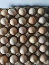 Fresh Country Chicken Eggs