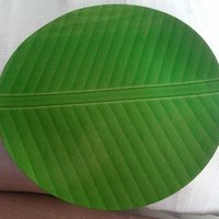 Disposable Printed Paper Plate