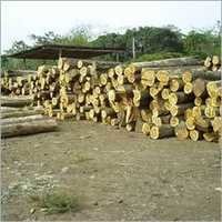 Industrial Teak Wood