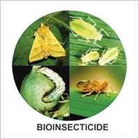 Organic Bio Insecticides