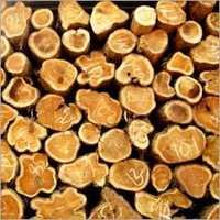 Ghana Teak Logs