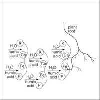 Liquid Potassium Humate