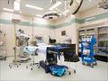 Hospital Pest Services