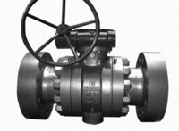 Trunnion Ball Valves in Tianjin