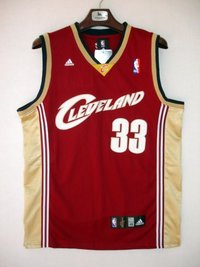 c5fe98563 Sell Nba Cleveland O Neal Sport Jersey