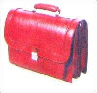 Official Portfolio Bags