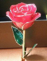 24k Gold Roses Christmas Day Gift