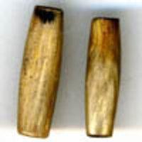 Bone Pipes