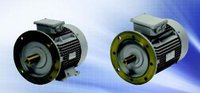 Squirrel Cage Induction Motors
