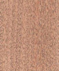 Golden Cedar Veneers Plywood
