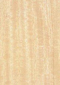 Golden Maple Veneers Plywood