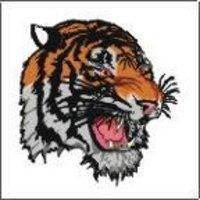 Tiger Face Tattoos