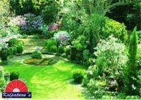 Green Landscaping Services