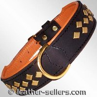 Fancy Leather Collar With Stud