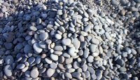 Gray Flat Pebbles