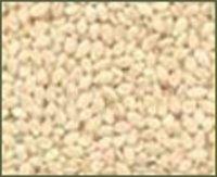 Sundry Hulled Sesame Seeds