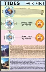Spring And Neap Tides Chart