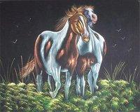Horse Velvet Paintings