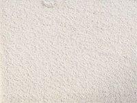 Carmina Wall To Wile Carpets