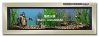 Electronic Wall-Hanging Fish Tank