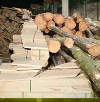 Chemically (Boron) Treated Rubber Woods