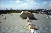 Roof Top Industrial Ventilators