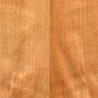 Steam Beech Timber