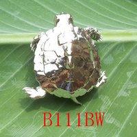 Bio-Jewelry Brooch Sacred Turtle