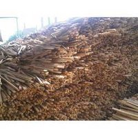 Pine Ripsaw Logs